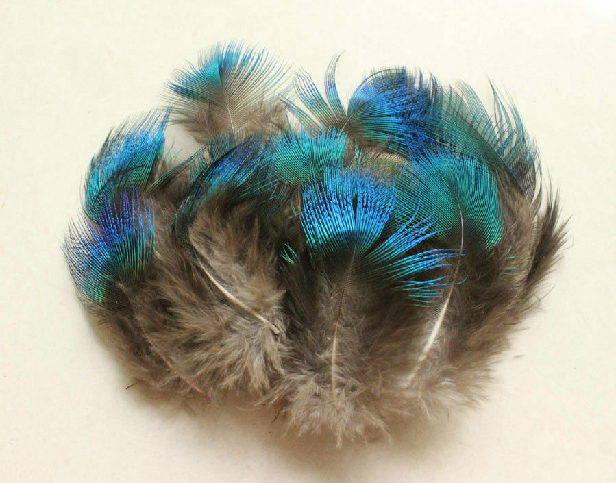 Wholesale 10-200 PCS FULL SIZE NEW  Pheasant Tail /& PEACOCK FEATHERS DIY