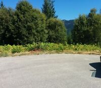 .42 Acre lot in Shuswap - Blind Bay - Lot 54 Glenmount Place