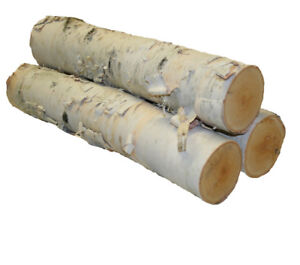 Looking for small birch logs.