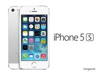 IPhone 5S (Silver/White) (6 months old) - Unlocked for any Network