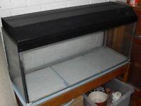 Fish tank - 75 litres