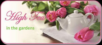 Orana's High Tea at Cummins House - 8Nov 2pm - $55pp Novar Gardens West Torrens Area Preview
