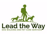 DOG WALKING, BOARDING & PET HOME VISITS IN MIDDLETON & SURROUNDING AREAS