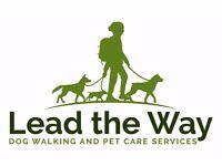 DOG WALKING, BOARDING & PET HOME VISITS IN MIDDLETON & SURROUNDING AREAS