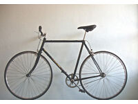 Gorgeous Lightweight Reynolds Single speed freewheel/not fixie, serviced