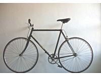 Beautiful Lightweight Handbuilt Falcon Single Speed Freewheel/ not fixie bike, serviced