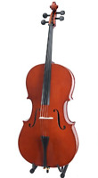 Looking For Cello Teachers in Airdrie AB