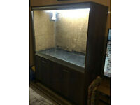 Walnut Viv 4 ft x 2 ft x 3 ft tall with Stand