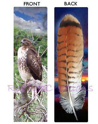RED TAILED HAWK BOOKMARK Tail Feather ART Bird Animal Book Mark CARD Figurine
