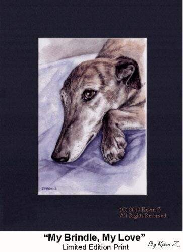 Brindle Greyhound Print My Brindle My Love Signed Art Artist Kevin Z Arttogo