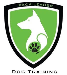 Become your Dogs Pack Leader - Private Lessons