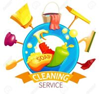 Cleaning small businesses/offices or houses