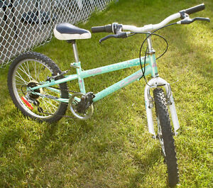 Girls' 5 speed Mountain Bike