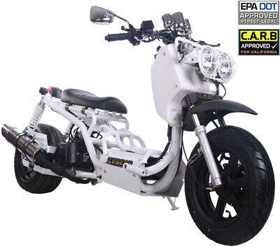 The Original 2020 ICE BEAR MADDOG 49cc Full Size Motor Bike Gas Scooter Moped 50