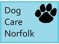 Dog Care Norfolk - offering live-in care, dog walking, small animal and cat care and more