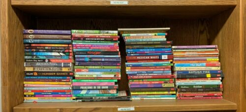 CB2 MIXED LOT 100 Kids Chapter Books MANY NEWBERRY AR Classroom VG-Good Cond!