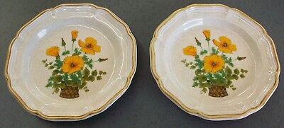 Mikasa Garden Club Petunias EC 401 Plates Tan, orange flowers in basket LOT of 2 - Baskets In Bulk