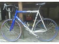 Barracuda Road Racing Bike