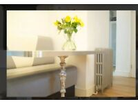 Stunning, airy, super central, fully furnished 1 bed flat - zone 1