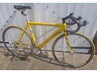 Carrera Virtuoso Road Bike ~ quality in good condition