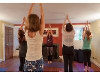 4 weeks Yoga For Complete Beginners Course. 5th to 26th October 5.30-6.30pm a