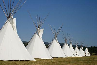 Ø 4m Tipi Indianerzelt Indianer Zelt lining Mittelalter larp WIGWAM Powwow ]]