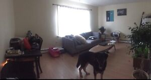 1 bedroom in a great location!