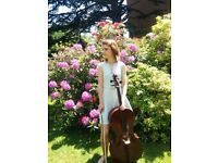Experienced Cello and Piano Teacher available in Bath Area