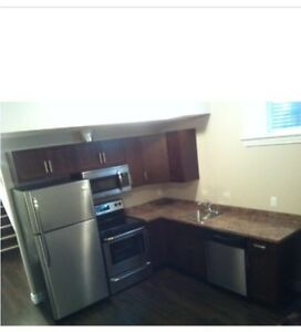 2 Bedroom legal basement suite Timberlea fully furnished