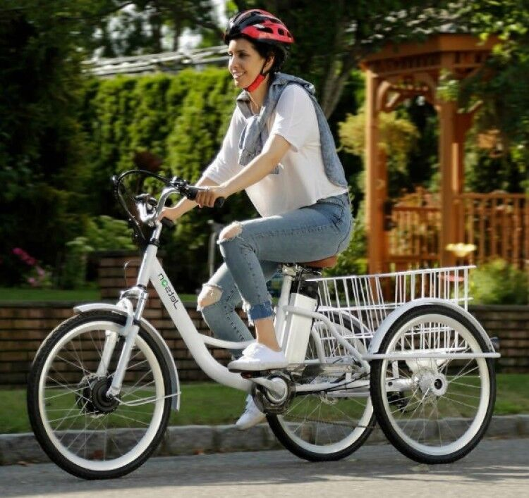 Details About Electric Tricycle 3 Wheeler Commuter 24 6 Sd 36v Removable 250 Watt