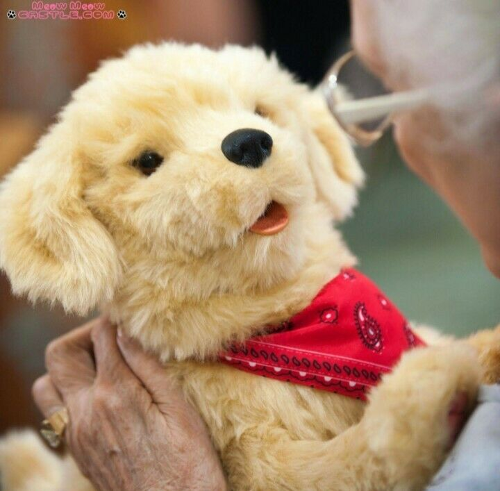 JOY FOR ALL - Golden Pup with Red Bandanna - Interactive Companion Pets - Rea...