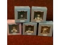 5x blue nose bears boxed