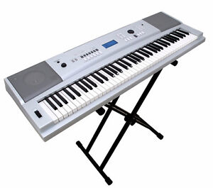 Looking to Buy a Keyboard
