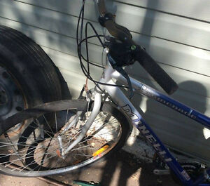 Mineli Mountain Bike! Needs Work!