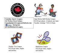 Badminton/Washer toss and Ball hockey leagues