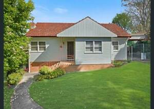 House for Rent in Wentworthville 3 Bedroom