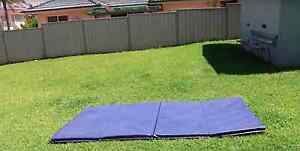 Blue Gymnastics panel mat Frenchs Forest Warringah Area Preview