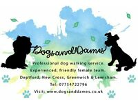 Dogs and Dames - South East London Dog Walking Service - Deptford, Lewisham, New Cross & Greenwich