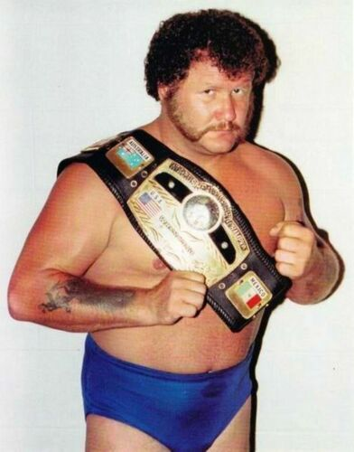 17 Pro Wrestling DVDs: The Best of HARLEY RACE!