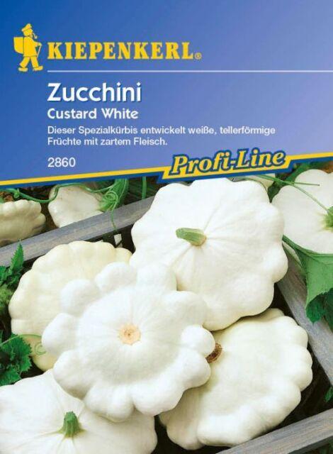Kiepenkerl - Zucchini * Custard White * weiß 2860 tellerförmige Zucchinisorte