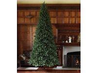 12ft stunning Christmas tree