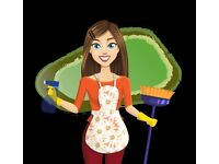Household cleaners wanted. Home cleaner cleaners housekeepers housekeeper house keeper keepers