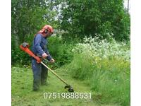 Greatest gardening at great prices