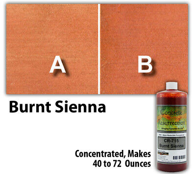 Professional Easy To Apply Water Based Concrete Stain Burnt Sienna 8oz