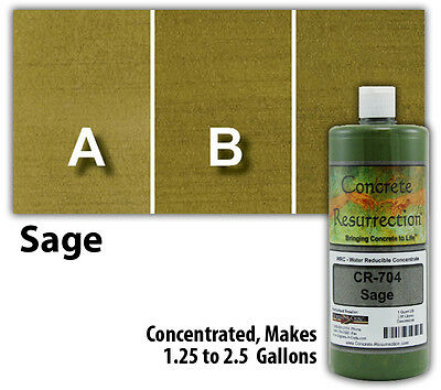 Professional Easy To Apply Water Based Concrete Stain - Sage