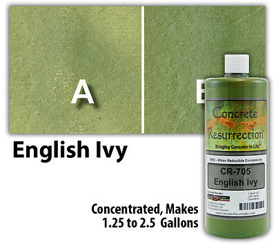 Professional Easy To Apply Water Based Concrete Stain - English Ivy