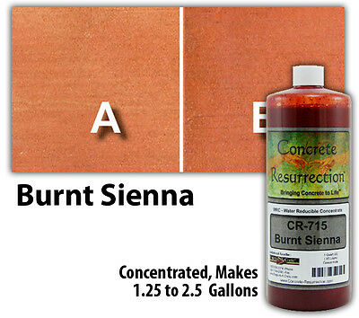 Professional Easy To Apply Water Based Concrete Stain - Burnt Sienna