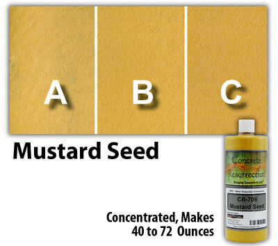 Professional Easy To Apply Water Based Concrete Stain Mustard Seed 8oz Bottle