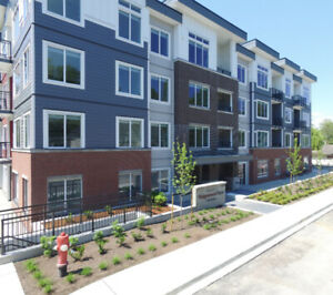 Brand New 1 Bedroom Apartments in a new 4 Story Building.