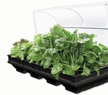 Vegepod Large Raised Garden Bed Murwillumbah Tweed Heads Area Preview